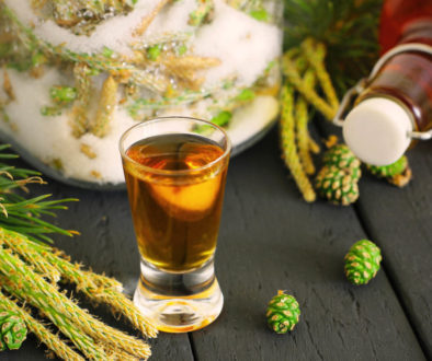 Pine sprouts syrup